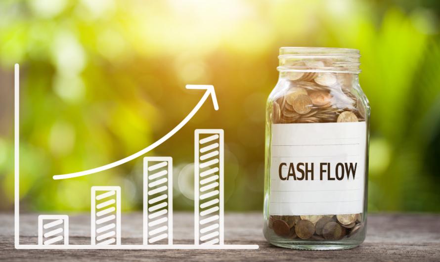 Cash Flow's Role in Success